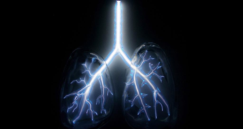 Diafragma Respiratorio: verdadero motor de la respiración