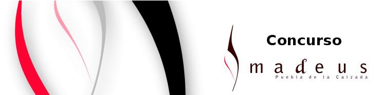 VIII Concurso Internacional Amadeus