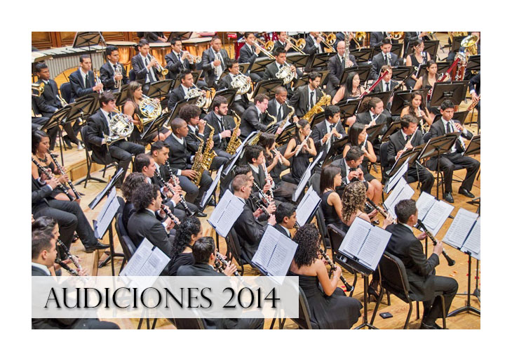Audiciones Banda Sinfónica Juvenil Simón Bolívar 2014