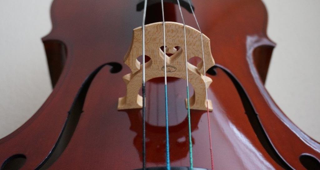 """La nota falsa o """"lobo"""" en los instrumentos de arco"""
