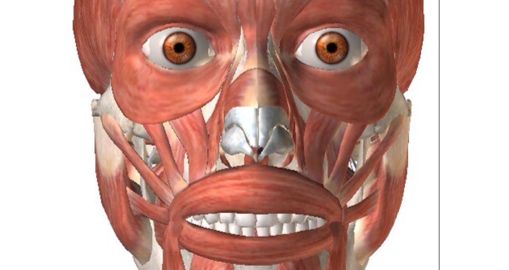El Cuidado de la Cara en los Instrumentistas de Viento