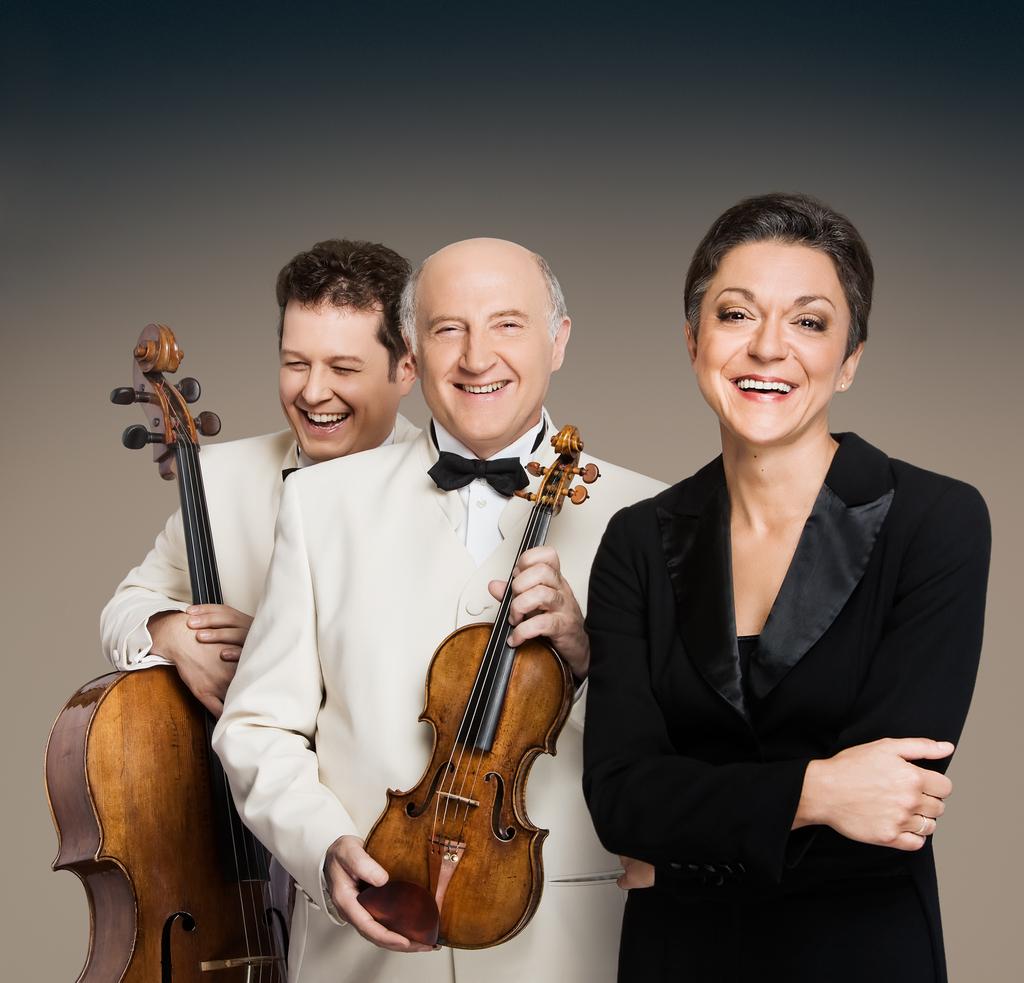 Wiener Brahms Trio