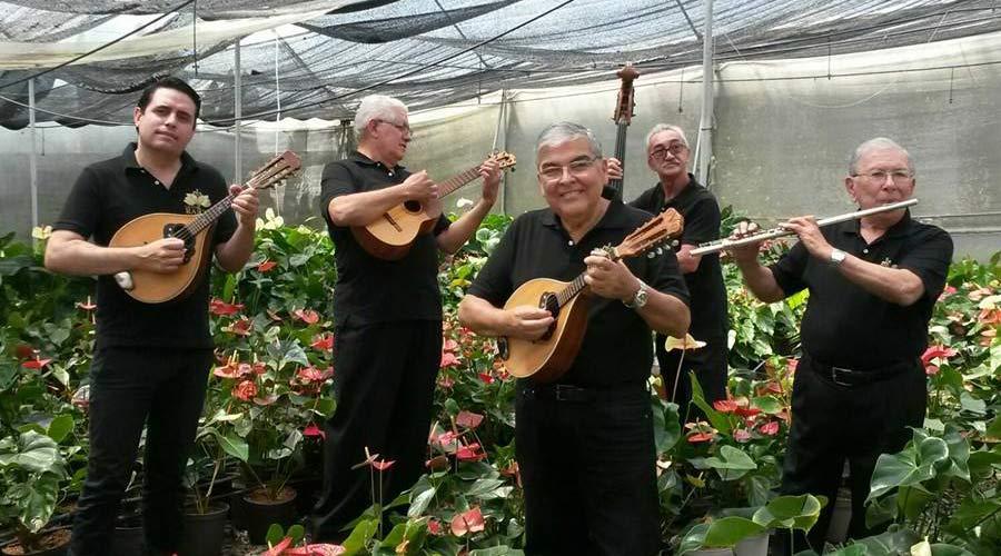 Grandes nombres de nuestra músicarinden tributo a Raíces de Venezuela