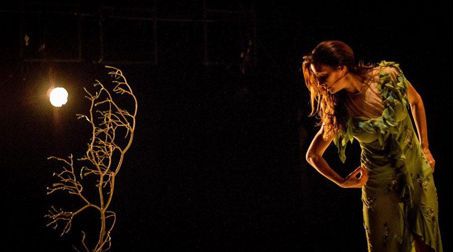 La Danza y la poesía regresan a la Sala Vigas del Centro Cultural Chacao