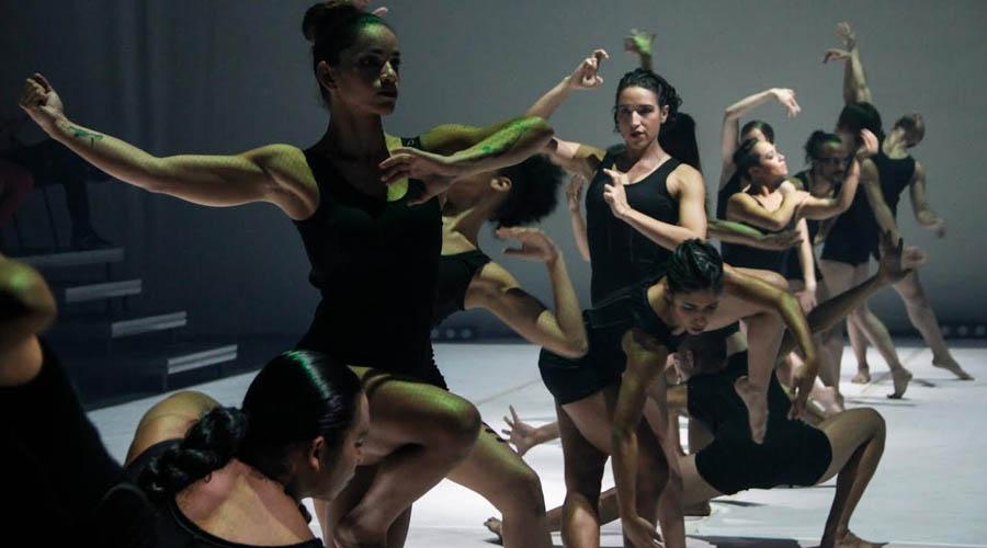 Elenco Teresa Danza Contemporánea abre audiciones