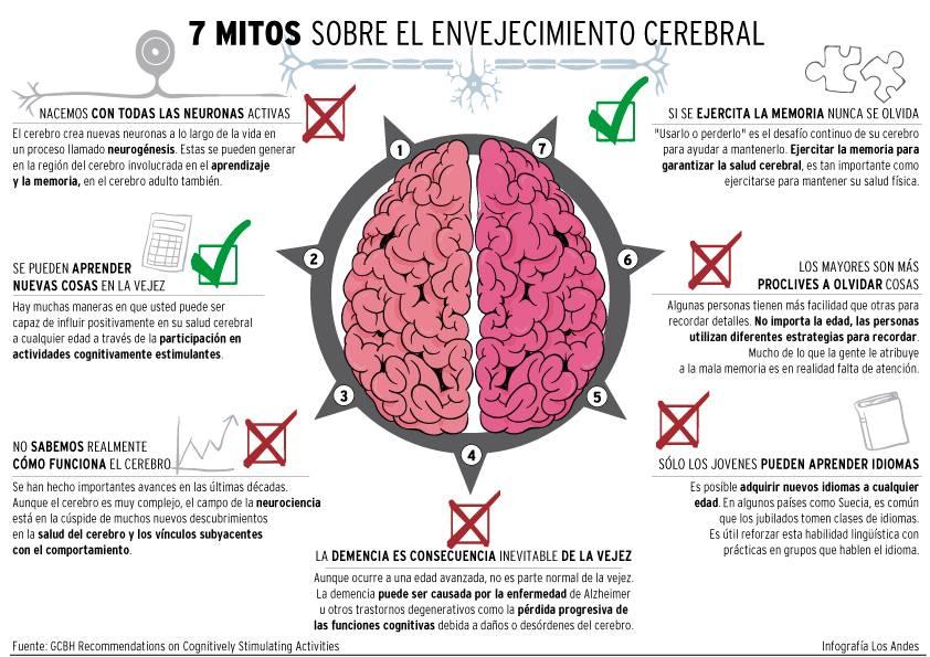 Actividades novedosas para estimular el cerebro