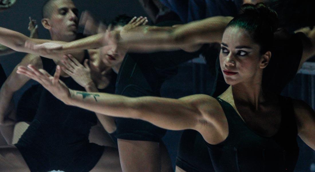 Teresa Danza Contemporánea galardonada con el Premio Municipal de Danza 2017